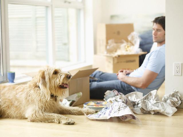 Shifting Household Goods